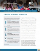 Evidence-Based Practices to Support Equity: A Snapshot on Mentoring and Induction