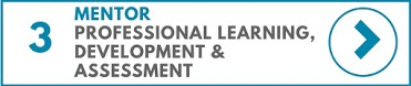 Mentor Professional Learning, Development & Assessment